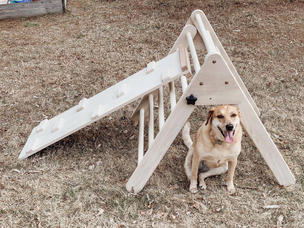 Pikler Triangle with Climbing Board & Slide