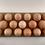 Thumbnail: Egg Holder (holds 17 eggs)