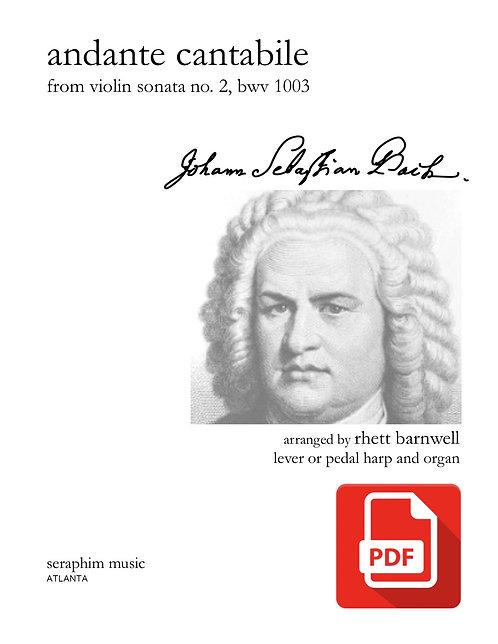 Andante Cantabile PDF Download