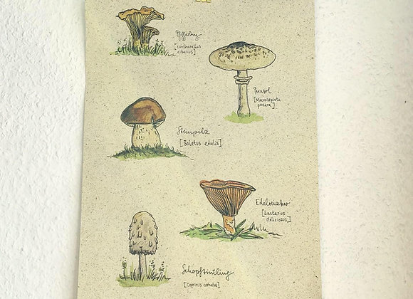 Graspapier Print Pilze