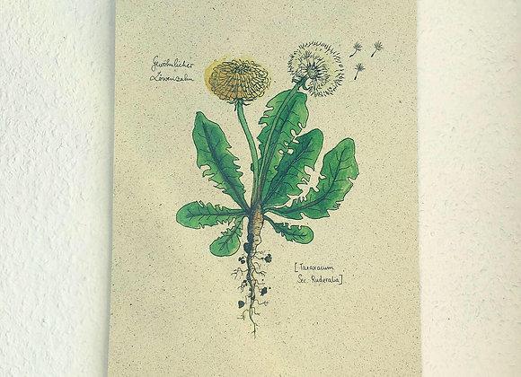Graspapier Print Löwenzahn