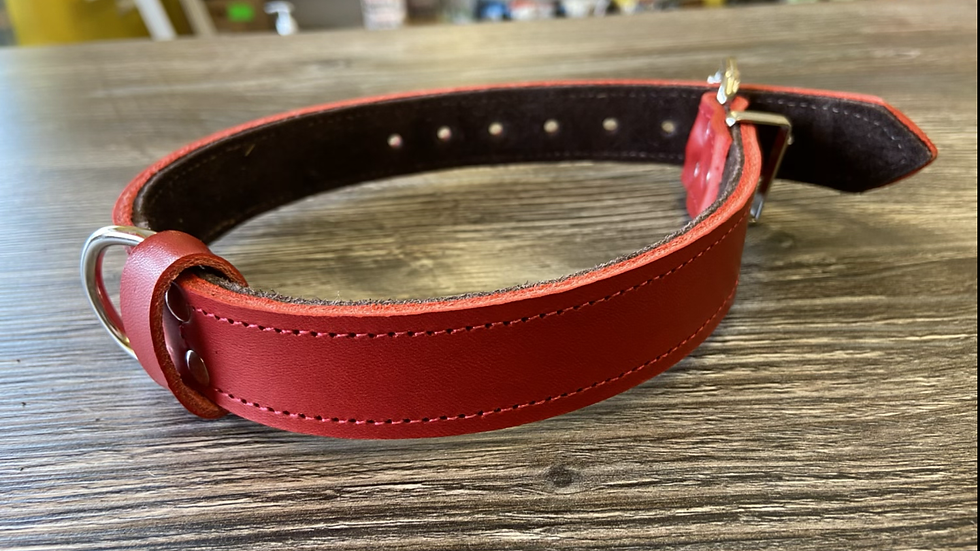 Plain leather collar