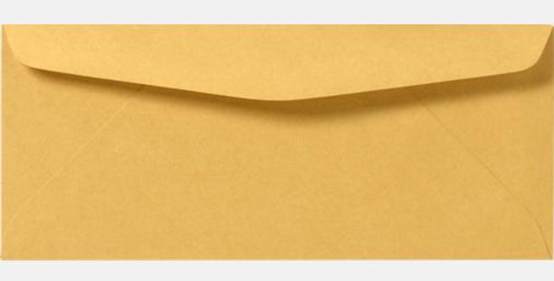 #10 Brown Envelopes