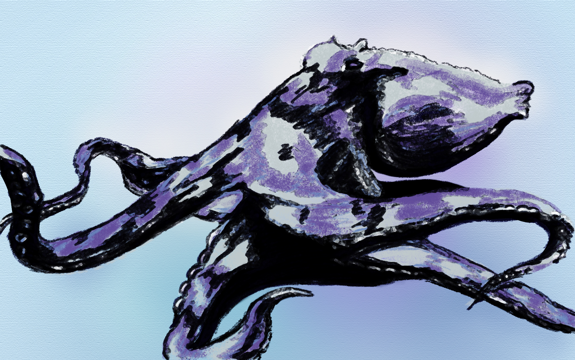 Digital Painting of an Octopus