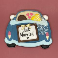 Just Married Car.jpg