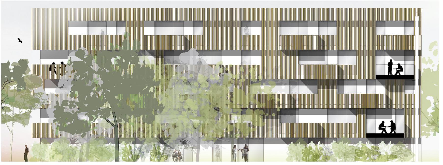 façade bois