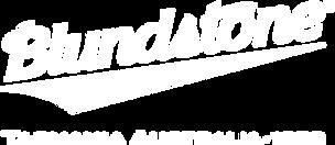 pngkey.com-titans-logo-png-8806040.png