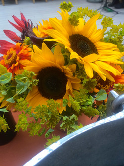 Hughes BBQ Summer sunflowers