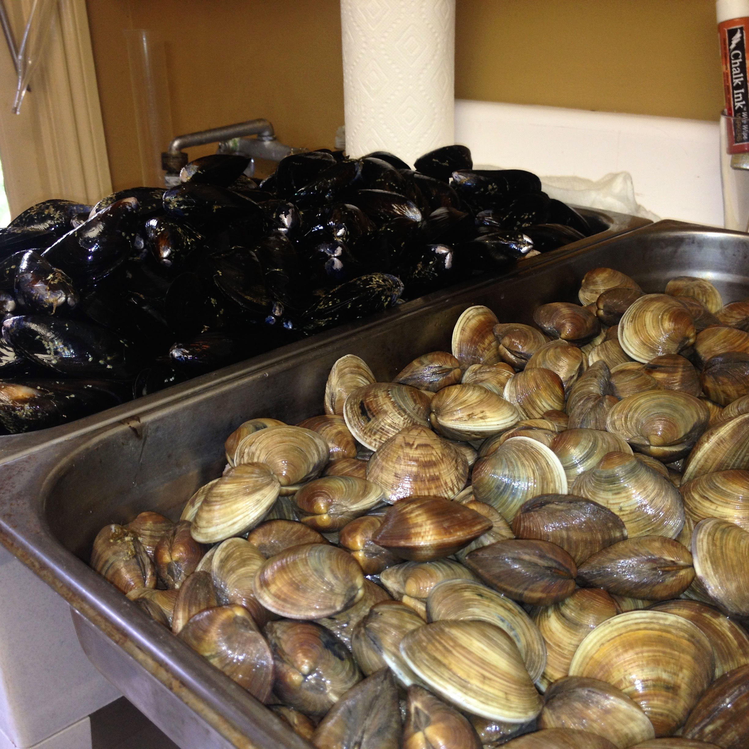 Muscardini SWCW Clambake Mussels and Clams