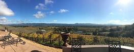 bvt_tasting_napa_winery