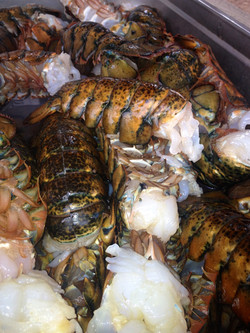 Muscardini SWCW Clambake Lobster Tails