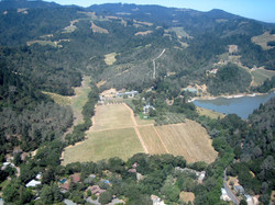 bird's eye view of Napa