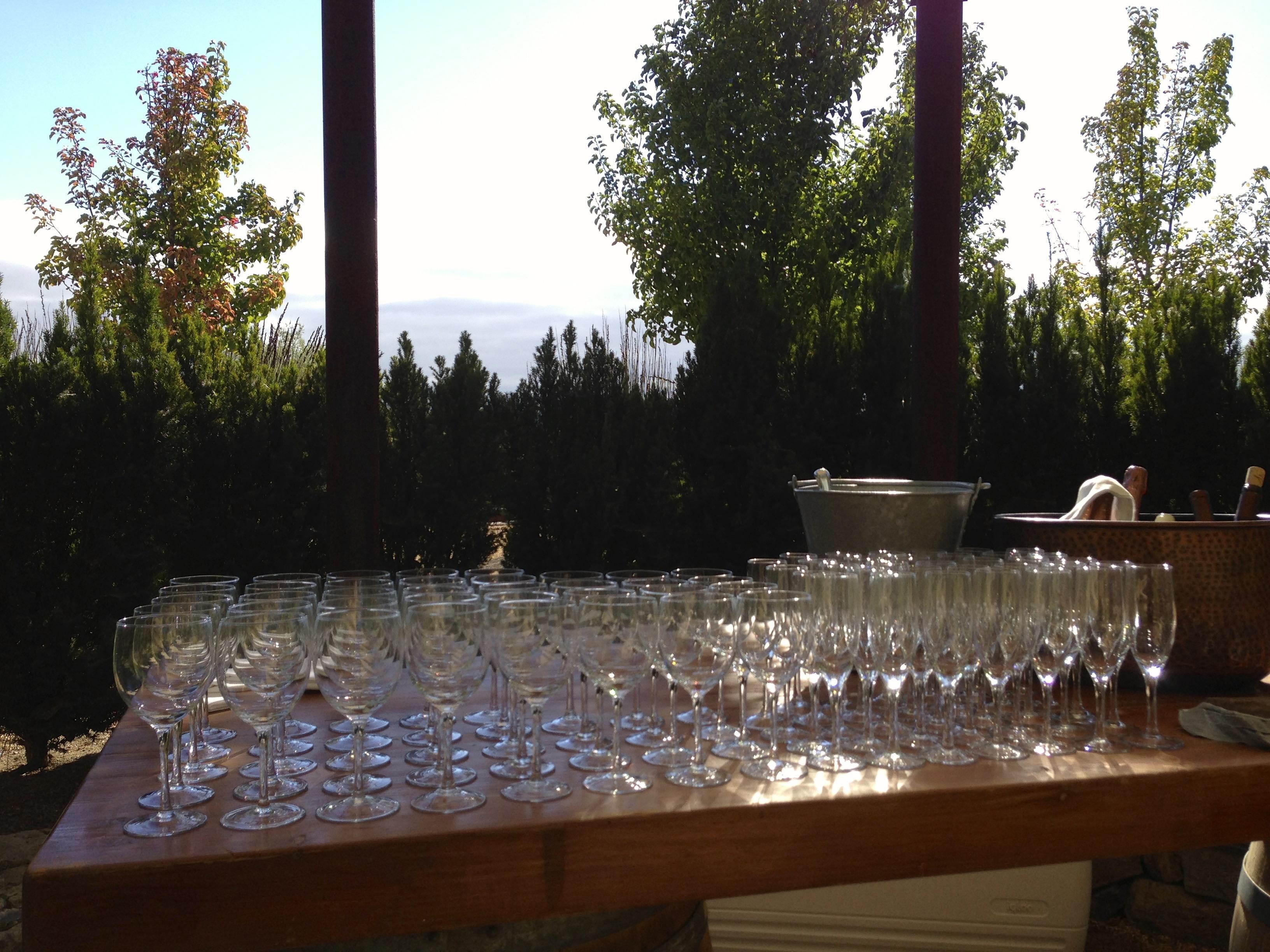 Sangiacomo Winery Welcome Bar
