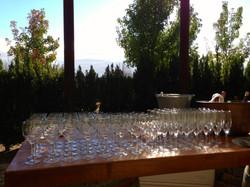 Sangiacomo Vineyards Bar 2