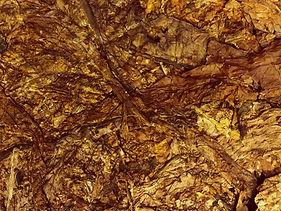 tobacco whole leaves2-2.jpg