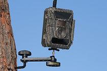 EZ-Aim III, Snyper Bottom Mounted Camera