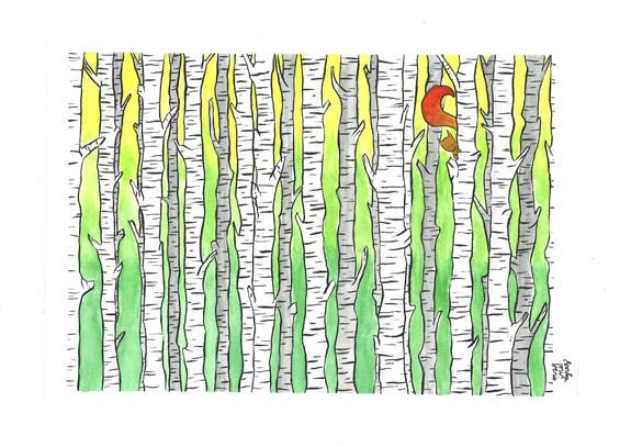 Renard dans la forêt