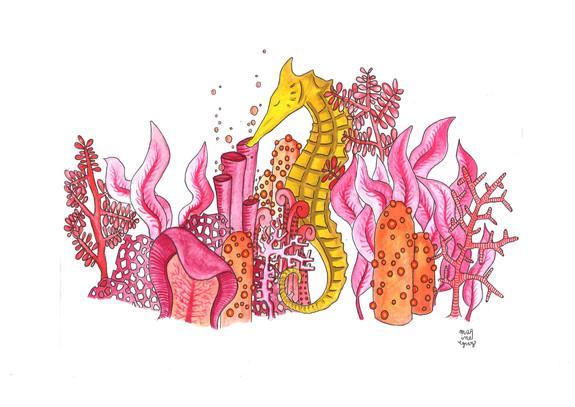 Hyppocampe
