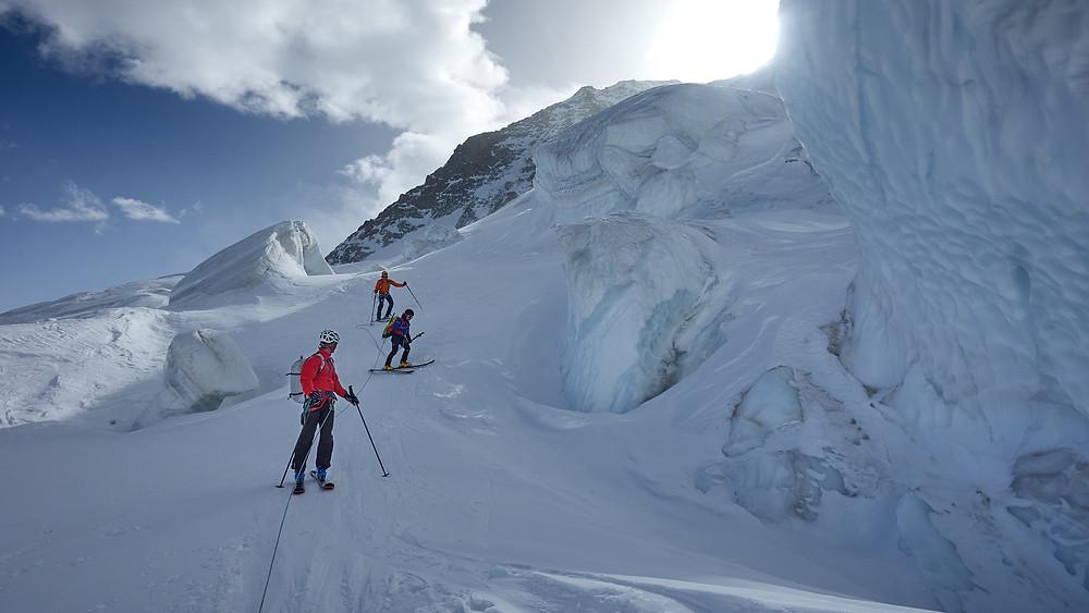 Skiing roped as a team on Bernina glacier