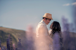 NZ Weddings