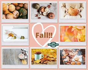 Fall!!.jpg