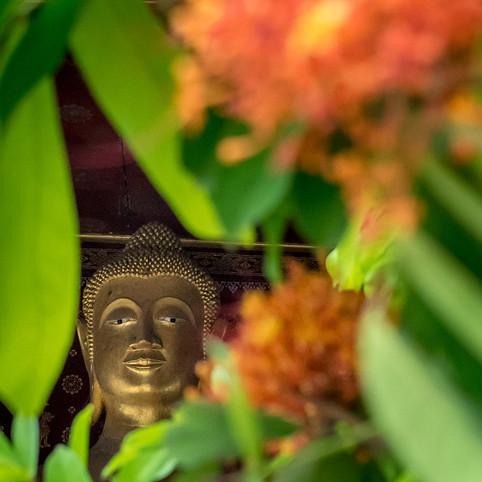 LAO_Luang_Prabang-5126.jpg