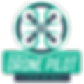 InterNACHI Drone Pilot Home Inspector City Owl Property Inspections