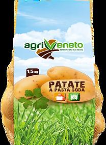 agriveneto potato onions italy