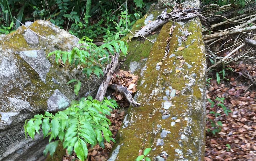 El Pilon Trail Boulders