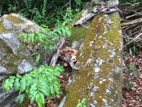 Quebrada el Pilon Riverbed Trail