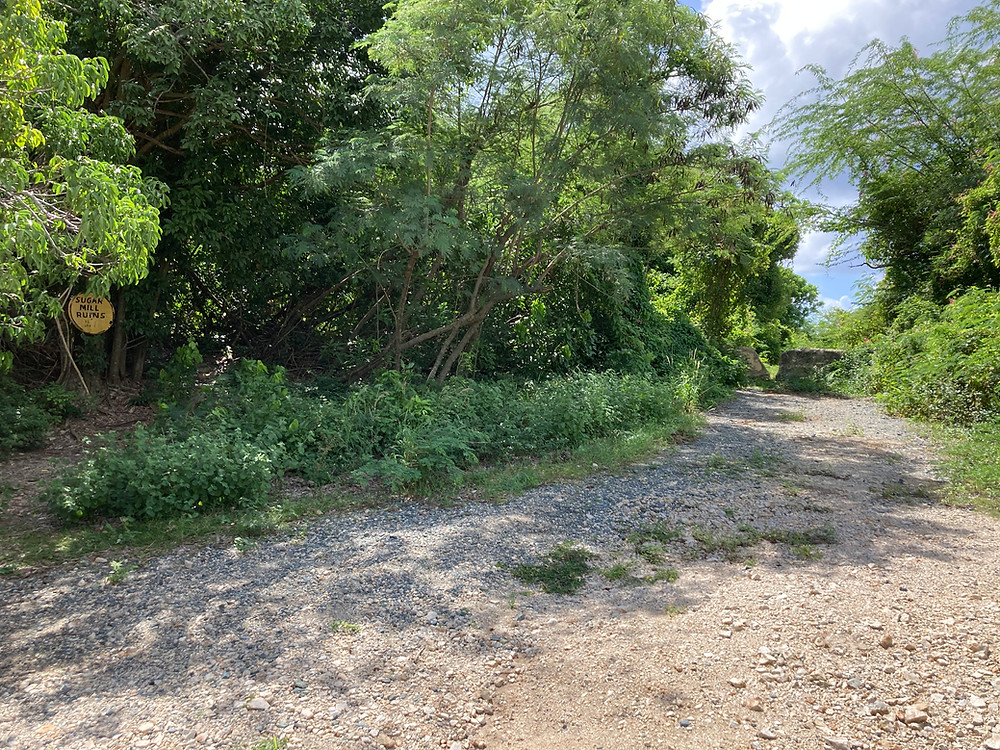 The west enSugar Mill Ruins Entrance and Parkingd of the Los Pobres trail looking northeast.