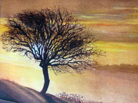 Tree Silhouette in New Forest - Acrylics