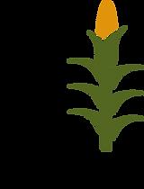 74-744584_corn-stalk-clipart.png