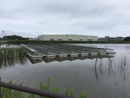 延べ面積3万㎡ ガラス加工工場
