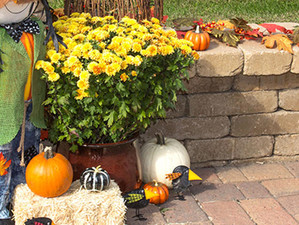 How to Create a Fall Container Garden