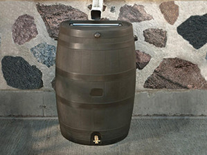 Rain Barrels Save Water and Money