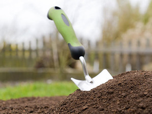 Amending Garden Soil