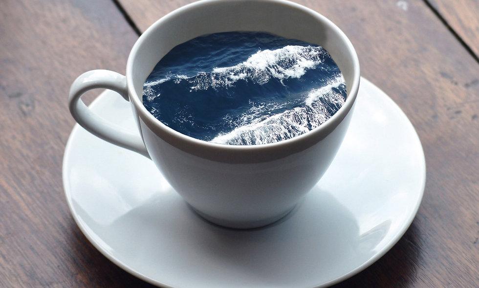 Calypso Coffee Plan