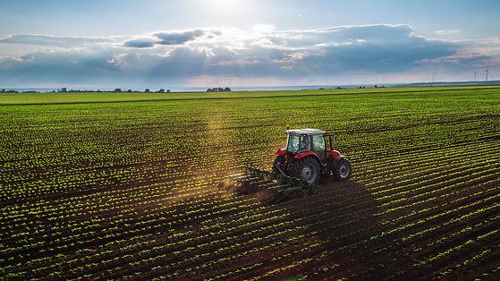 Farmers for Bruce.jpg