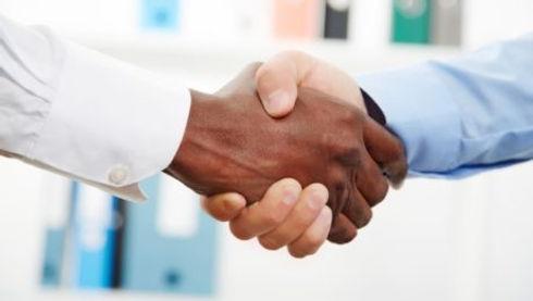 Partnership MGS.jpg