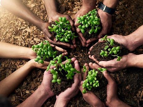 Food Security 2.jpg