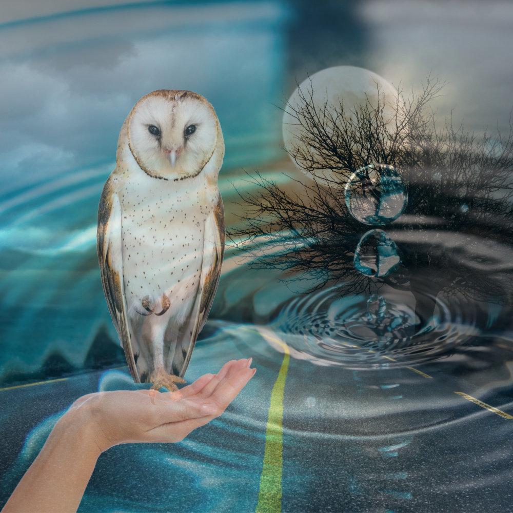 Aromatherapy for Trauma & Addiction
