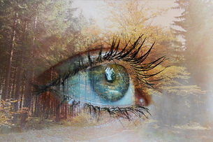 transformation eye.jpg