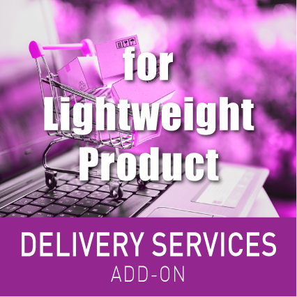 DELIVERY SERVICE FOR LIGHTWEIGHT PRODUCTS