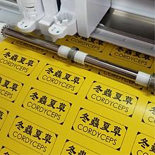 Label Sticker_Rectangular SC (sample col