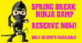 Spring Break Camps ninja.jpg