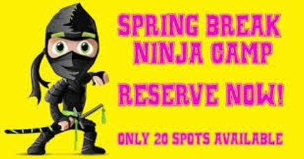 Spring Break Camps ninja.jpg
