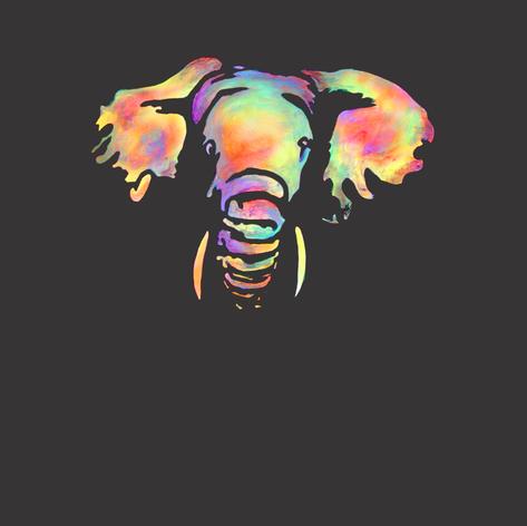 Elephant web.png