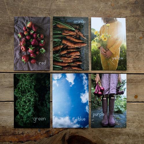 The Hobbs Farm number + colour cards