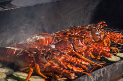 20160706ccpbz00_making-lobster-1021-h